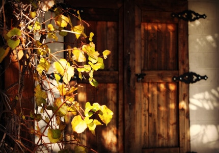 Behind the Cellar Door in Amador County, CA features many family-owned wineries