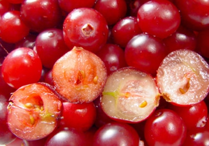 Cranberries, whether eaten fresh or dried, are an excellent source of Vitamin C