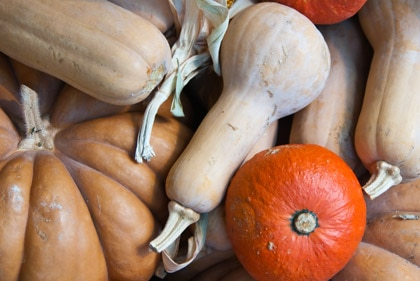 Pumpkins possess many vital nutrients and are actually quite delicious