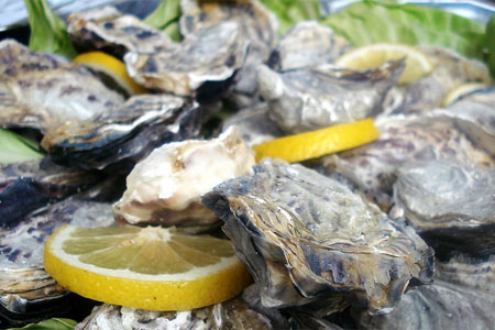 Maldon oysters (image by Flickr user Farrukh)