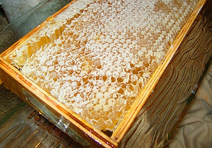 Honeycomb offers a myriad of health benefits and can help heal wounds and burns