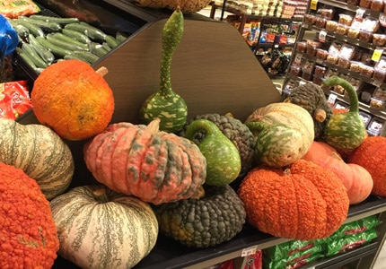 Pumpkins and gourds, the traditional fruit of Thanskgiving