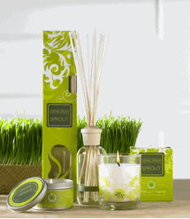 Hillhouse Naturals Farm's Living Green Collection