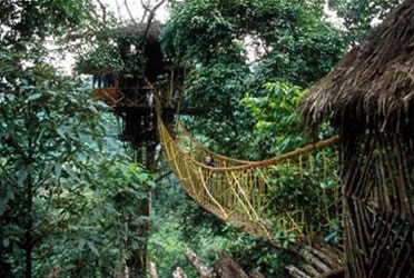 A treehouse at Green Magic Resort in Kerala, India