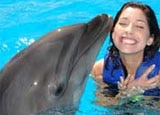 Playing with dolphins at The Hilton Los Cabos Resort