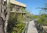 The walkway to Finch Bay Eco Hotel in the Galapagos Islands, Ecuador