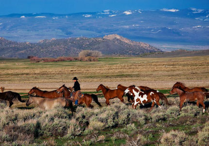 Riding at The Lodge & Spa at Brush Creek Ranch in Wyoming, one of GAYOT's Top 10 Wild Rest Ranches