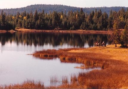 Horseback riding at Siwash Lake Ranch in British Columbia, Canada