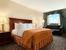 Room at Hilton Lisle/Naperville, Lisle, IL