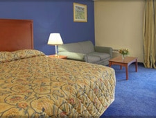 Room at Bradley Hotel and Conference Center, Windsor Locks, CT