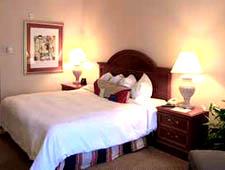 Room at Hilton Garden Inn Calabasas, Calabasas, CA