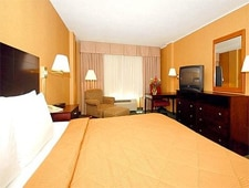 Room at Comfort Inn---Airport, Bloomington, MN