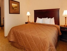 Room at Comfort Inn & Suites, McMinnville, OR