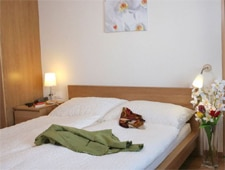 Room at THIS ESTABLISHMENT HAS BECOME SAANEWALD LODGE z'loft hotel, Saanenwald Gstaad, CH