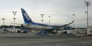 All Nippon Airways was the first carrier to begin flying the Dreamliner