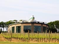 A Boeing 747 sits atop the Evergreen Wings & Waves waterpark next to Evergreen Vineyards in McMinnville, OR