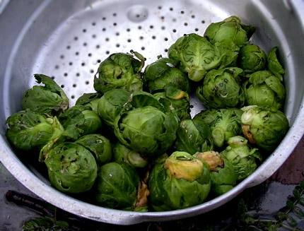 One cup of Brussels sprouts contains four grams of dietary fiber