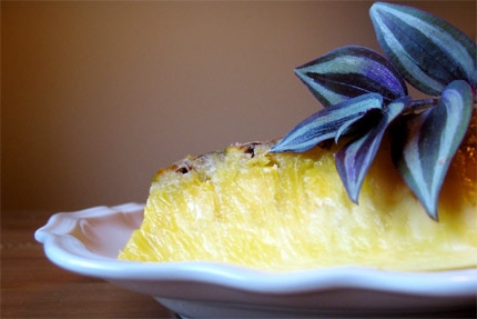 A slice of pineapple