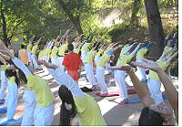 Guests practicing yoga outdoors at Sivananda Ashram in the Sierra Foothills of Northern California