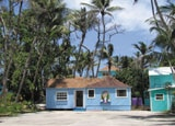 Swaying palm trees surround Sivananda Ashram Yoga Retreat in The Bahamas