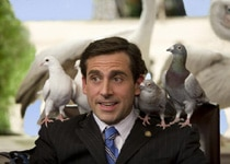 Steve Carell displays his animal magnetism in Evan Almighty
