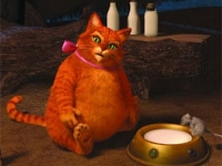 Antonio Banderas as Puss in Boots in Shrek Forever After