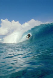 The Ultimate Tahiti 3D, Featuring Kelly Slater