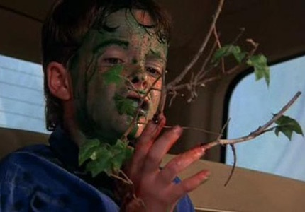 Troll 2 has a vast cult following thanks to its implausible plotline following a group of vegetarian goblins