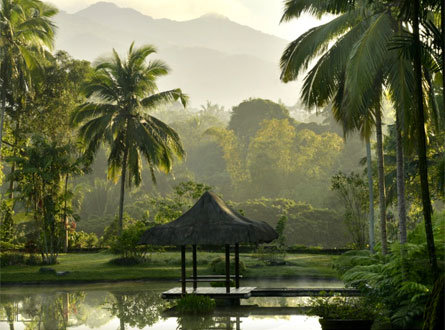 The Farm at San Benito, a luxe and holistic healing center in the heart of the Philippine jungle