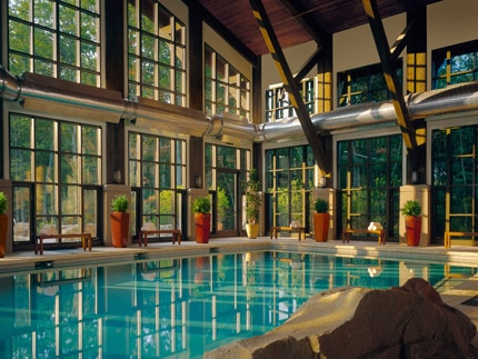 The stunning indoor pool