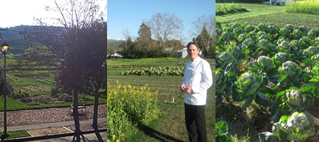 Keller created a three-acre garden just across the street from The French Laundry