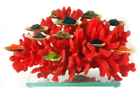 Coral caviar at Tru, one of GAYOT's Top 40 Restaurants in the US
