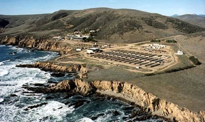 The Abalone Farm in Cayucos, California