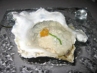 Oyster in ice gelée