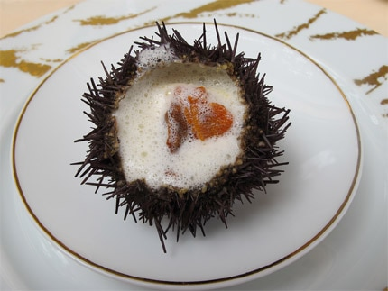 A plate of sea urchin