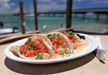 Enjoy fresh cuisine at Hungry Tarpon in Islamorada, Florida