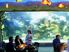 Dining Room at Aquarium, Nashville, TN