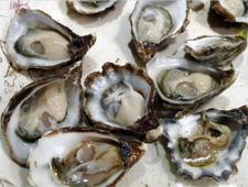 The Jolly Oyster, Ventura, CA