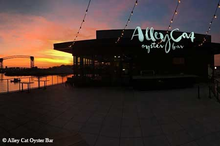 Zack Bruell's Alley Cat features shoreline cuisine in the Flats East Bank entertainment district.
