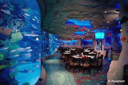 If sharks watching you eat isn't of concern, Aquarium is for you.
