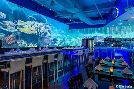 Blu Sushi, Fort Myers, FL