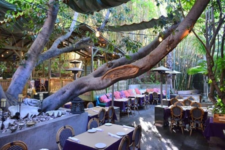 Enjoy a meal on the patio at Cliff's Edge, one of GAYOT's Best Outdoor Dining Restaurants in Downtown LA & Silver Lake