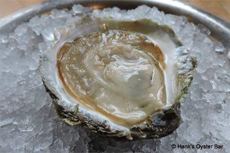 Hank's Oyster Bar, Washington, DC