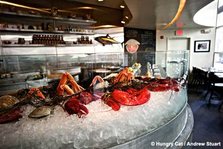 Enjoy some of LA's best seafood at The Hungry Cat restaurant in Hollywood