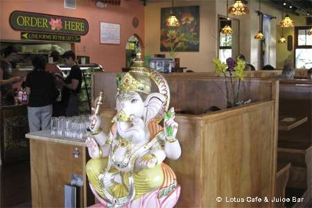 Lotus Cafe & Juice Bar