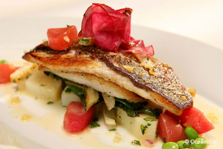 Enjoy some of the Chicago area's best seafood at Oceanique restaurant in Evanston
