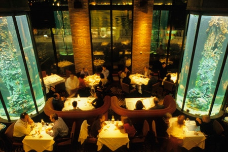 Dining Room at Waterbar, San Francisco, CA