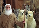 Steve Carell and friends in Evan Almighty