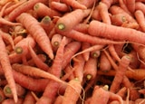 Carrots at a market
