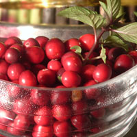 Learn why cranberry is king when it comes to your health